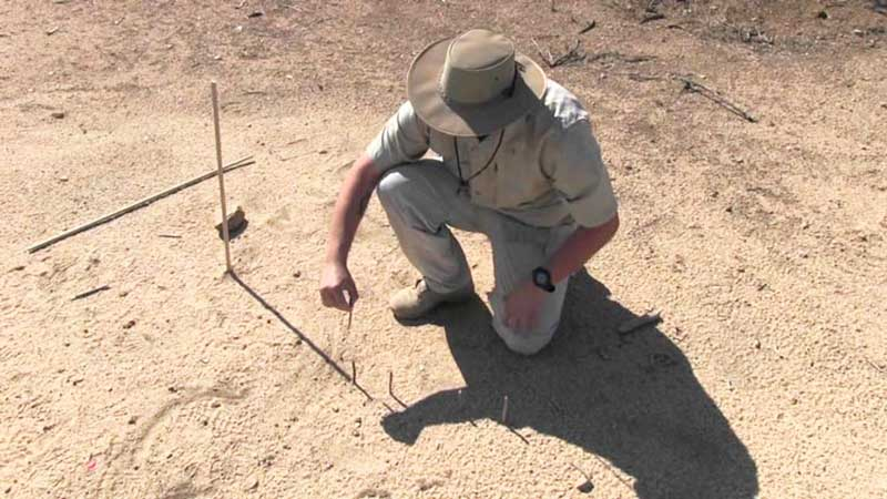 جهتیابی به وسیله یک شاخص چوب - آموزش تکنیکهای جهت یابی در طبیعت - ایران در سفر
